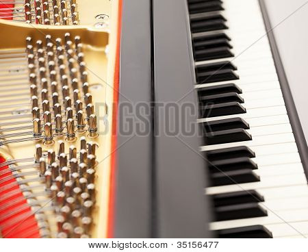 Interior Of Grand Piano With Keys
