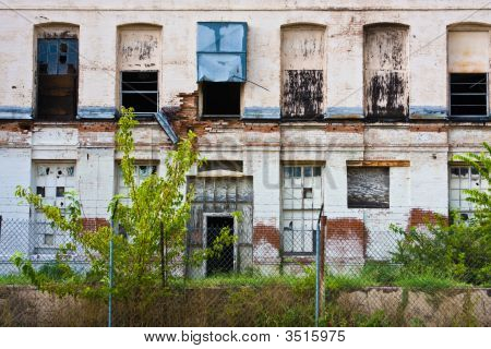 Wall Of Urban Decay