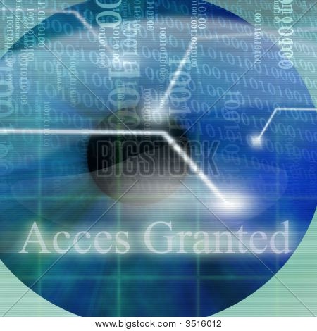 Access Granted After Eye Scan