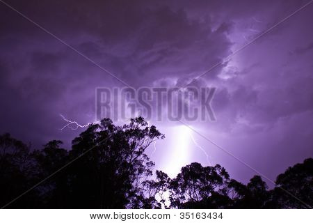 Lightening strikes over gumtrees