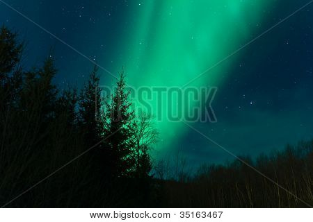 Northern lights (Aurora Borealis)