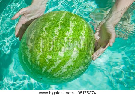 green watermelon in woman hands