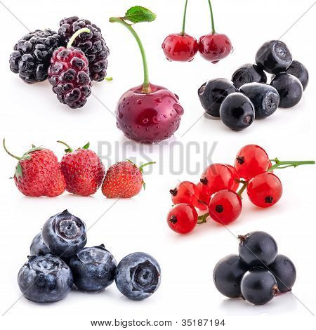 Collection of berry