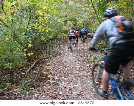 Autumn Cyclists