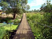 picture of boggy  - Suspension bridge over small boggy  river - JPG