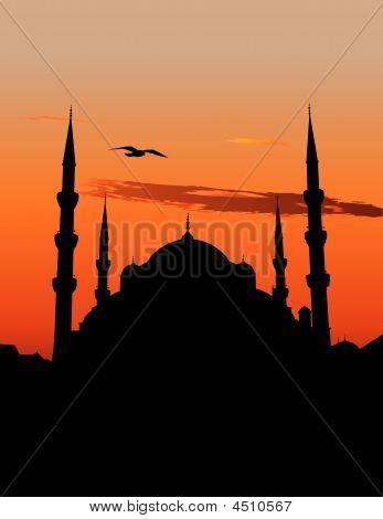 Blue_mosque_istanbul_crw_0215