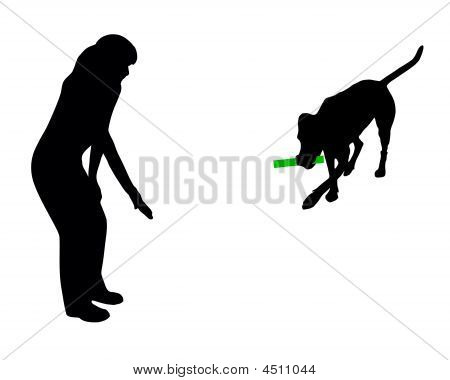 Dog Training (obedience): Command: Bring Stick