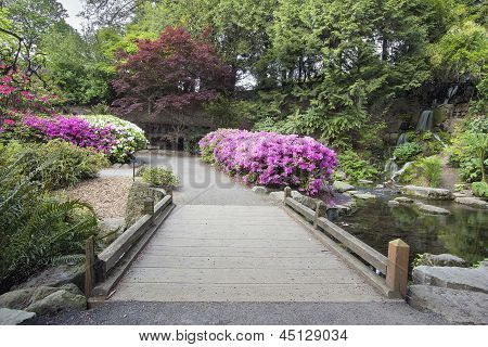 Foot Bridge Across Waterfall Pond