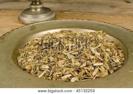 Echinacea Infusion