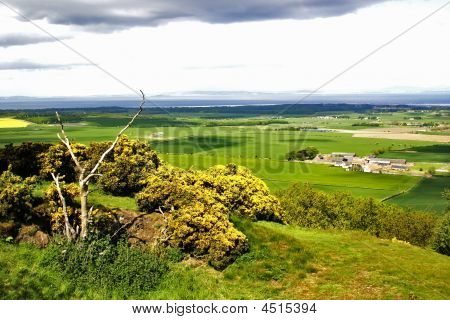 View From Byres Hill, Scotland