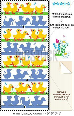 Match to shadow visual puzzle - ducklings