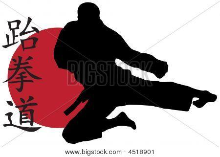 Karate Sprung