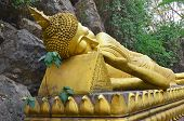 Buddha at Wat Tham Phousi shrine