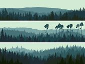 image of coniferous forest  - Horizontal abstract banners of hills of coniferous wood in dark green tone - JPG