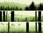 image of coniferous forest  - Horizontal abstract banners of hills of coniferous wood in green tone - JPG