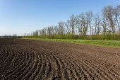 Ploughed field, spring scene in central Ukraine