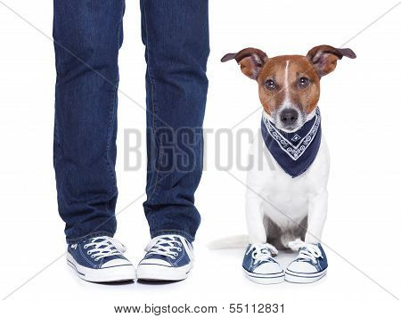 Dog Owner  And Dog