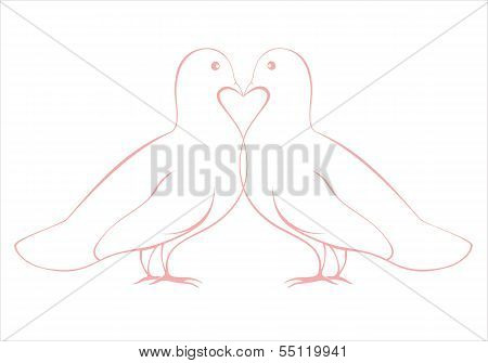 Pair Of Love Doves Vector Illustration, Valentine Card Design