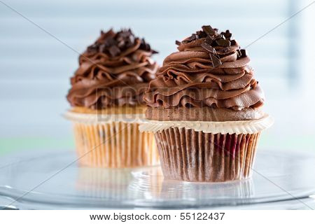 two creamy chocolate cupcake
