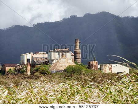 Sugar Mill Over Cane Fields