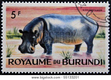 stamp printed in Kingdom of Burundi shows an African animal - Hippopotamus