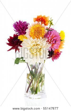 Bouquet Dahlias in glass vase isolated over white background