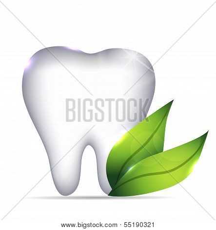 Tooth and leafs
