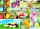 stock photo of bird fence  - Collage of colorful Easter - JPG