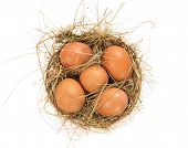 stock photo of baste  - Eggs - JPG