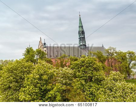 Historical Cathedral in Sandomierz, Poland