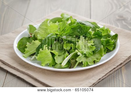Mix Salad In White Bowl