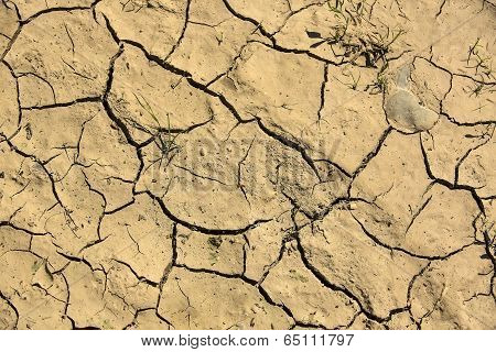 cracked earth removed closeup