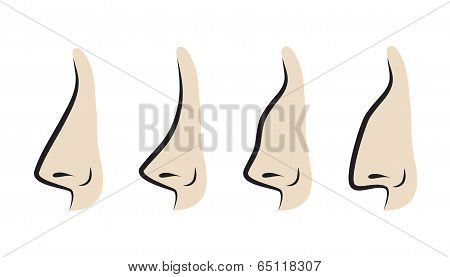 Vector Illustration Of Noses