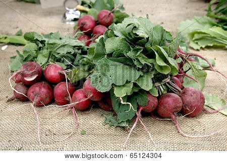 Three bunches of radishes sit on a table at a Farmer's Market