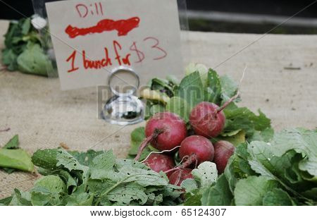 Fresh radishes on a table at a farmers market table with a price sign