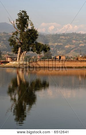 Himalayan reflection
