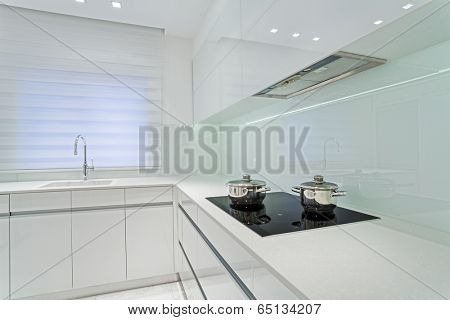 Modern Luxury White  kitchen