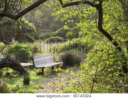Bench and Field at Sunset