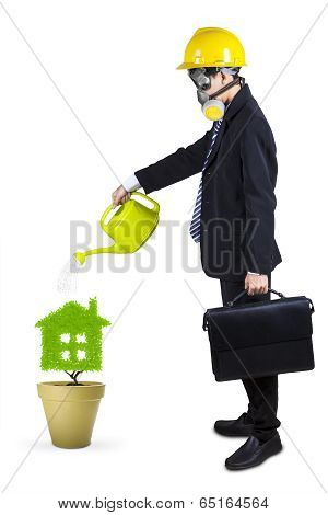 Businessman Watering Plant Isolated