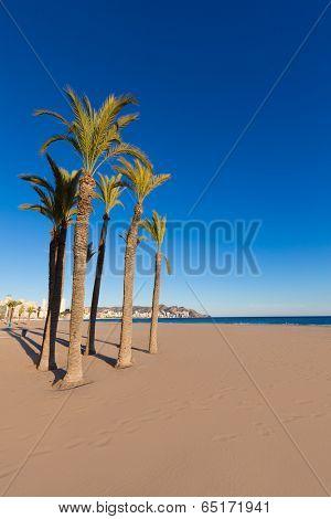Benidorm Alicante playa de Poniente beach in spain Valencian community