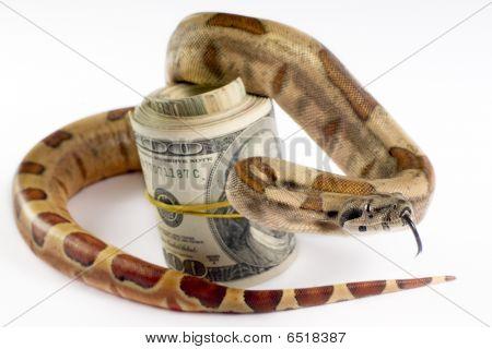 Dangerous Money.