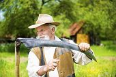 picture of scythe  - Old farmer with beard sharpening his scythe before using to mow the grass traditionally - JPG