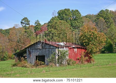 Barn with Peeling Roof