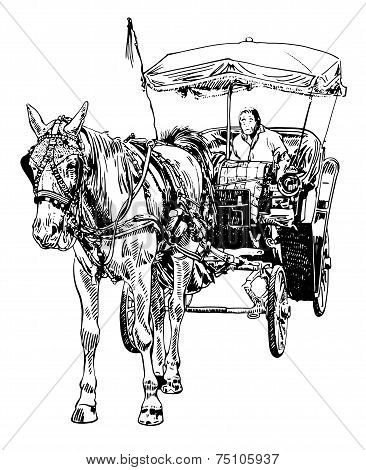 black and white sketch drawing of horse driver