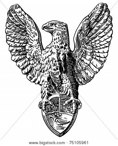 black and white drawing of heraldic sculpture eagle