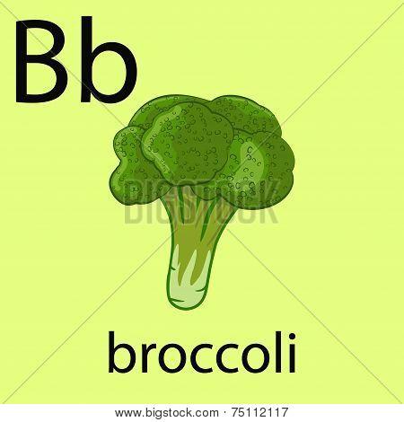 Hand Drawn Broccoli Illustration