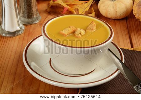 Cup Of Butternut Squash Soup
