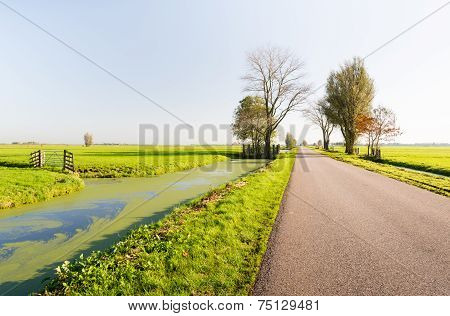 Country Road Next To A Ditch