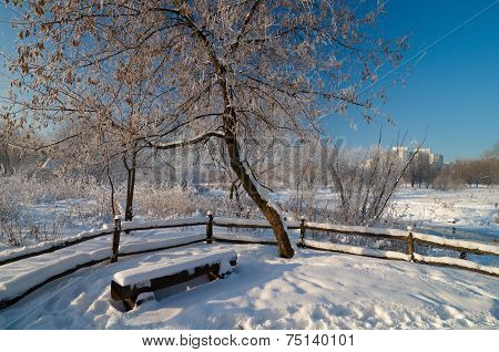 Winter Scene In Moscow