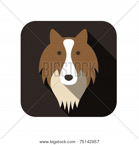 Shetland sheepdog animal flat icon